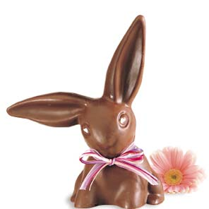 http://livingjourney.files.wordpress.com/2007/04/chocolatebunny.jpg