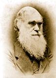 charles-darwin-evolution
