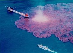 oil_spill_0002